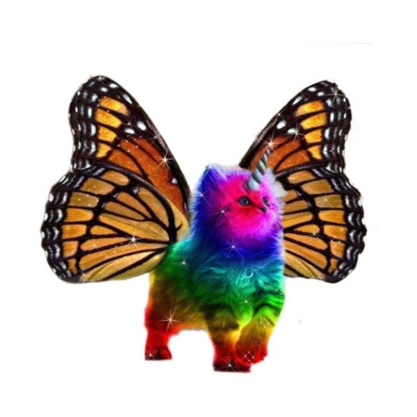 Butterfly Rainbow Unicorn Cat