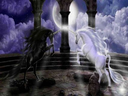 Female And Male Unicorns  The Female Is A Pure Wa Lady And The