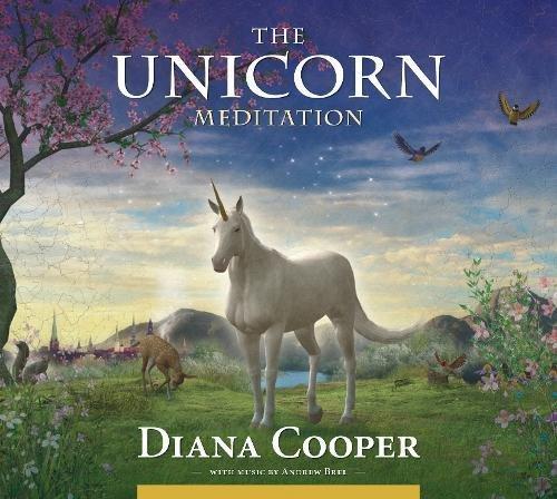 The Unicorn Meditation  Diana Cooper  9781844095254  Amazon Com  Books