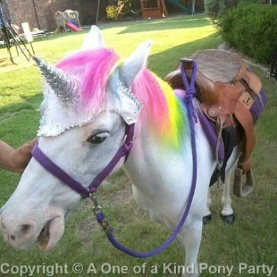 Theme Pony Parties
