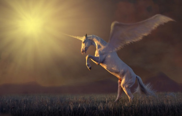 Why Does The Bible Mention Unicorns