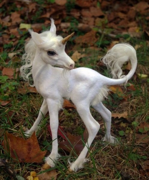 A Baby Unicorn Is Called A  Hazlet