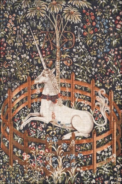 Aubusson Wall Tapestry Captive Licorne Unicorn Paris