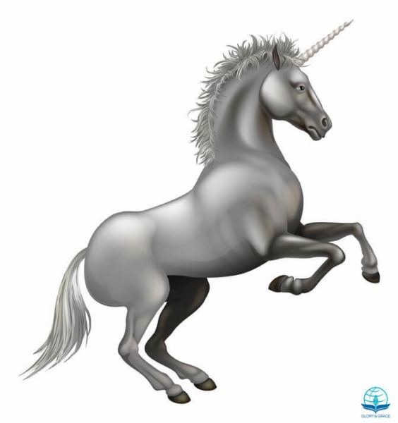 The Number Of Horns On A Unicorn