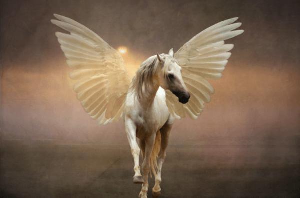 Types Of Unicorns  4 Mythical Creatures · This Unicorn Life
