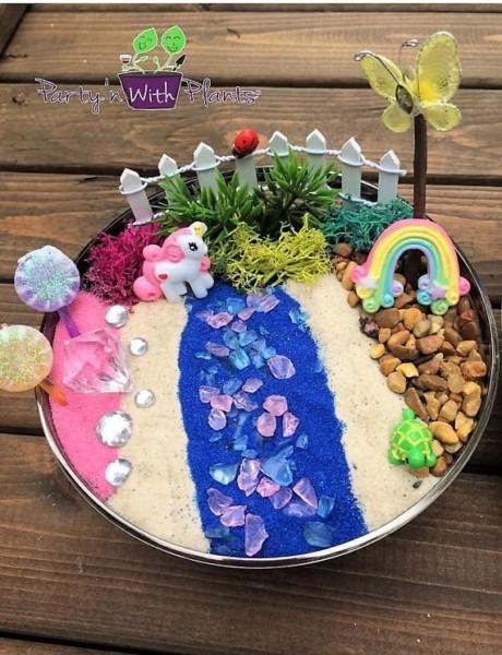 Unicorn Fairy Garden, Succlents, Fairy Garden Kit, Succulent