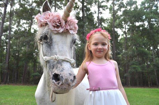 Unicorn Photo Shoot