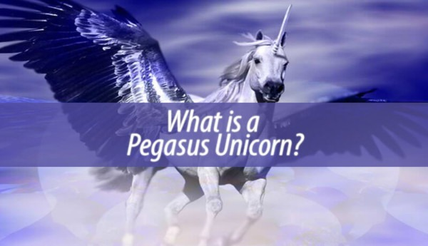 What Is A Pegasus Unicorn