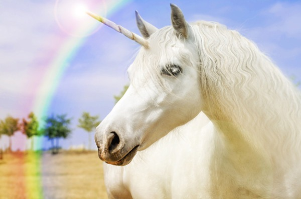 Book Your Ideal Trip And We'll Give You A Unicorn Name