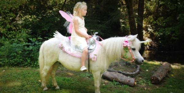 Dreamland Ponies