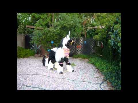 Gypsy Vanner Unicorn Costume