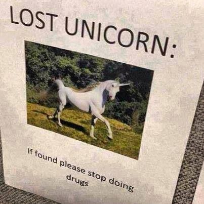 Have You Seen My Unicorn