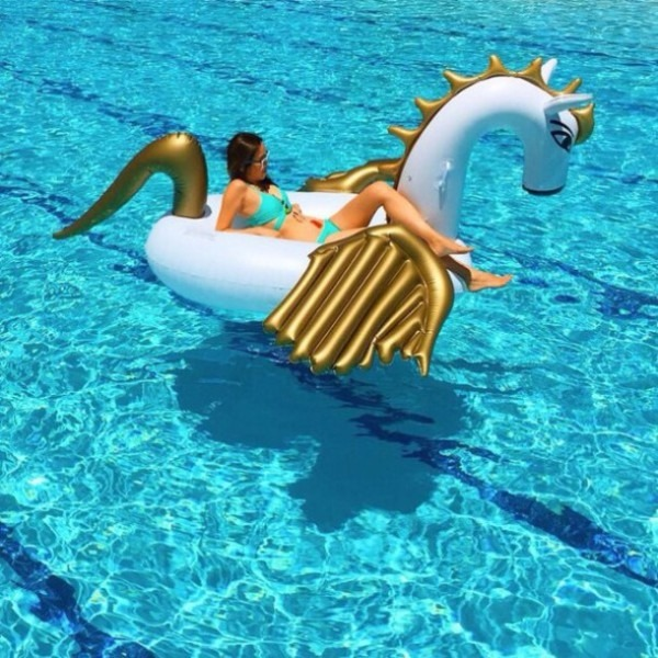 Home Accessory, Unicorn, Swimming, Pool, Pool Party, Pool