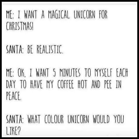 Me  I Want A Magical Unicorn For Christmas  Santa  Be Realistic