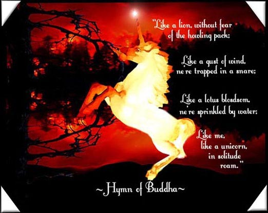 Unicorn Poetry And Quotes