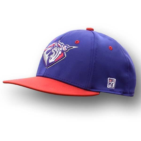 Unicorns Purple Home Game Hat – United Shore Professional Baseball