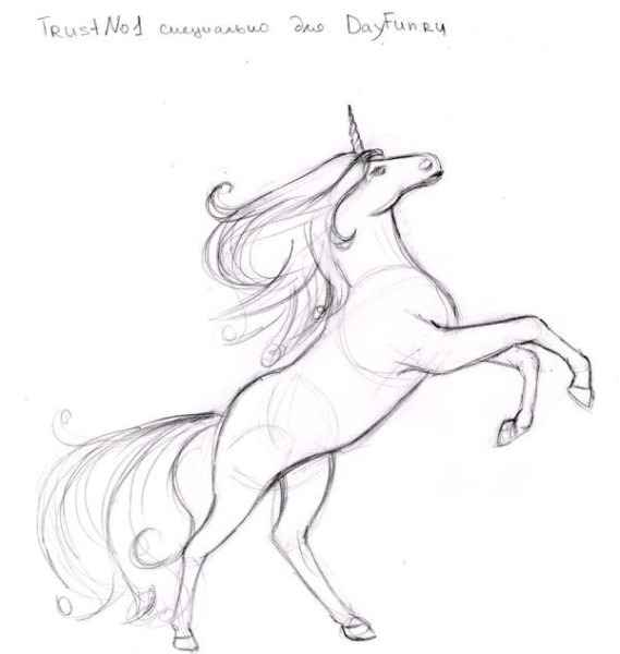 How To Draw A Unicorn Step By Step 5
