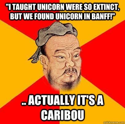 I Taught Unicorn Were So Extinct, But We Found Unicorn In Banff