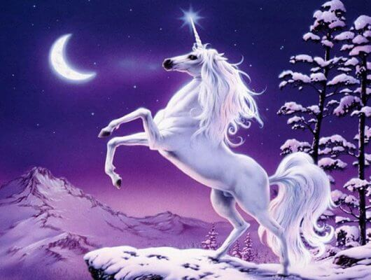 Meet The Fantastical Creature  Unicorn