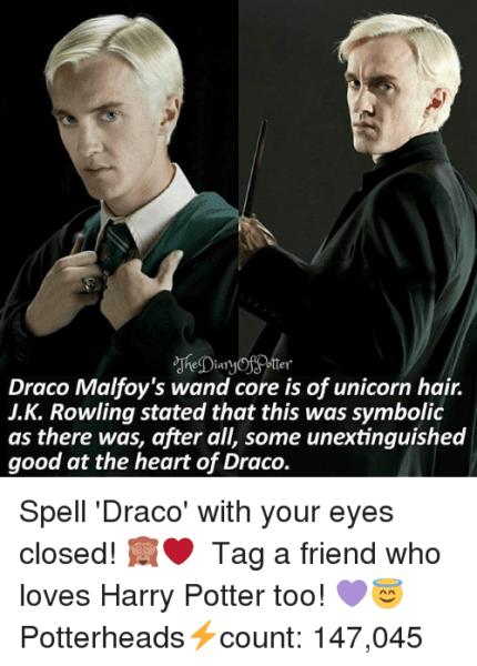 Otter Draco Malfoy's Wand Core Is Of Unicorn Hair Jk Rowling