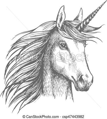 Unicorn Horse Sketch With Horn  Unicorn Horse Animal Vector Sketch