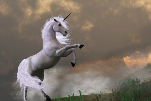 What Is A Unicorn  A Business Rockstars Minute
