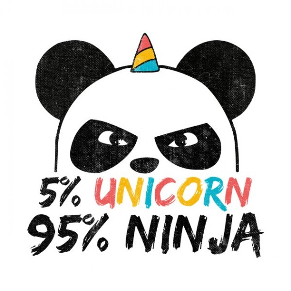 5  Unicorn 95  Ninja Birthday Gift
