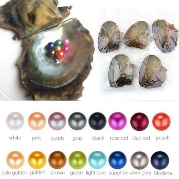 Akoya Oyster Contain Round Pearl At Least 1 In Every 6
