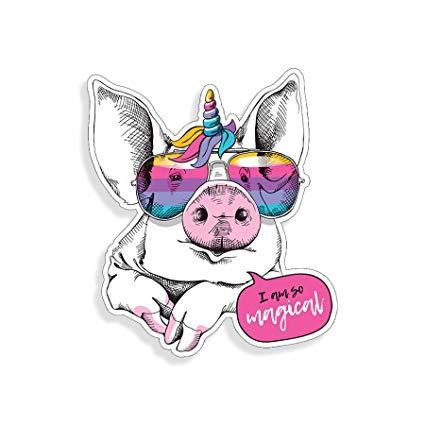Amazon Com  Pig Unicorn Rainbow Glasses Sticker Car Truck Laptop