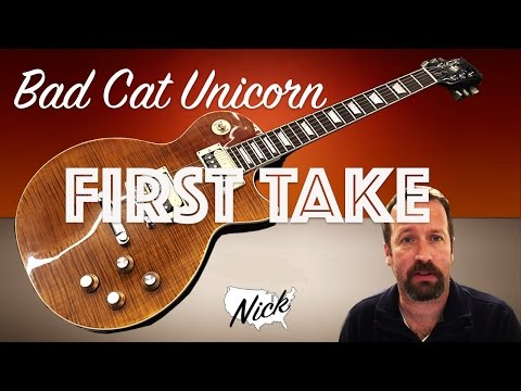 Bad Cat Unicorn First Impressions