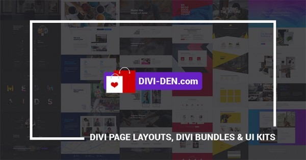 Divi Theme Products