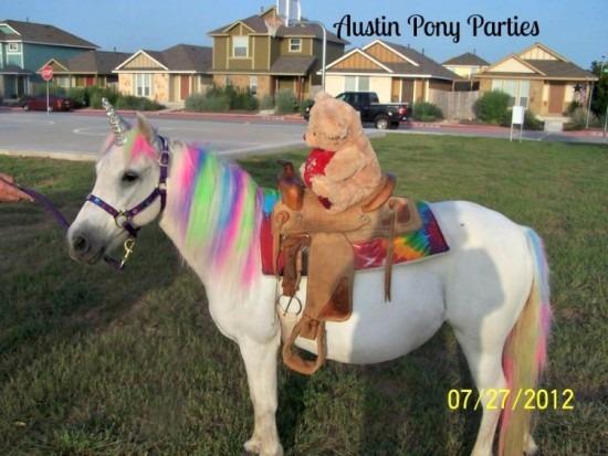 Hire Austin Pony Parties