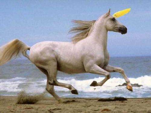 Literal Unicorn
