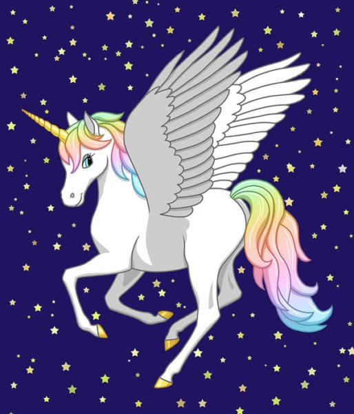 Pretty Rainbow Unicorn Flying Horse Poster By Crista Forest