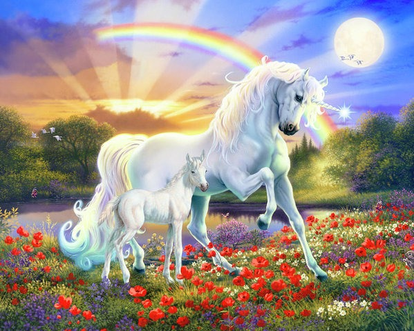 The Rainbow Unicorn Poster By Mgl Meiklejohn Graphics Licensing