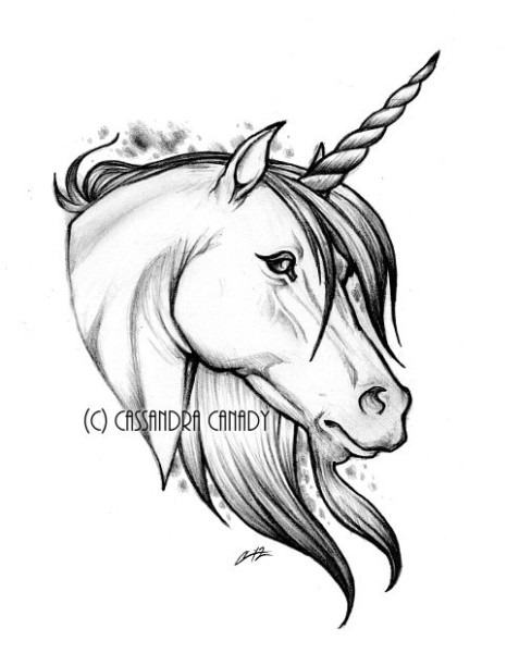 Unicorn Pencil Sketch At Paintingvalley Com