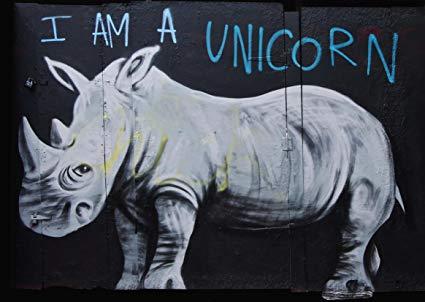 Amazon Com  Rhino