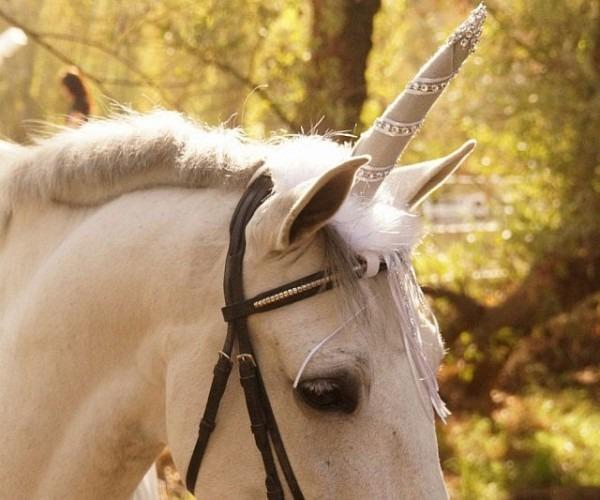 Horse Unicorn Costume