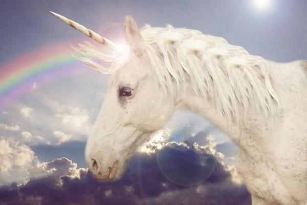 Retail Unicorns  Rent The Runway, Casper, Glossier, Away