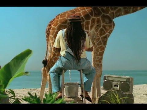Skittles Commercial 2018 Milking A Giraffe