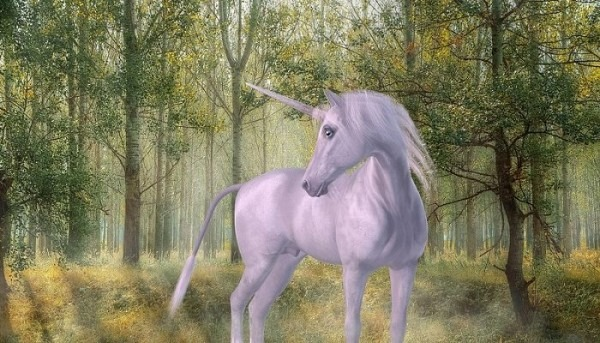 Unicorn Dreams – Meaning And Symbolism