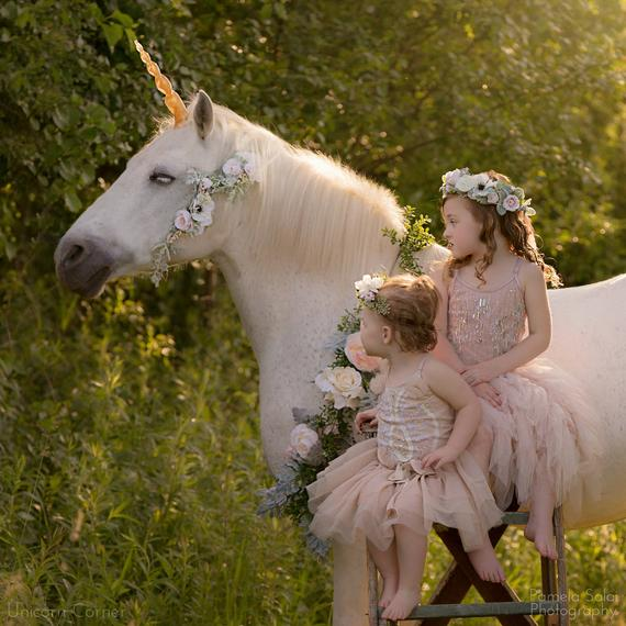 Unicorn Horn For Horses And Ponies   Unicorn Costume For Horse