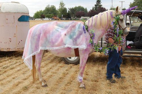 A Unicorn!!
