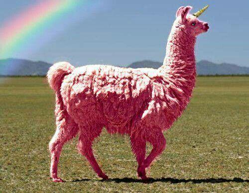 Pink Llama Unicorn