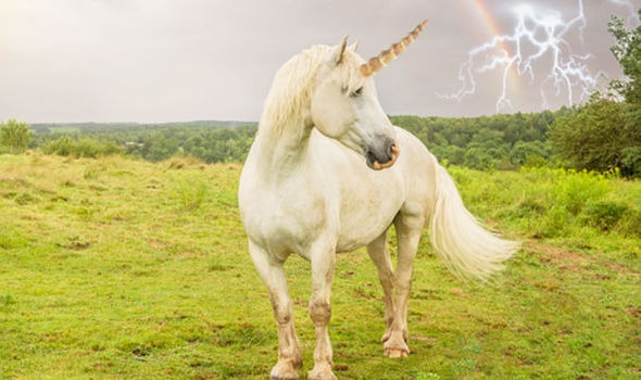 Ten Things You Never Knew About Unicorns