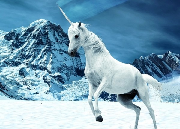 Why You Aren't Going To Find 'unicorns' In Malaysia