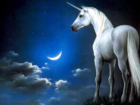 Folk Song Irish Rovers The Unicorn Song