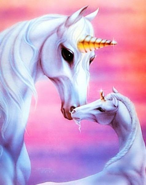 Unicorn And Pegasus Fantasy Unicorns Unicorn Images Gallery In 2019