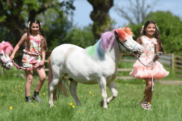 Unicorn Land' Is Coming To Bristol This Summer