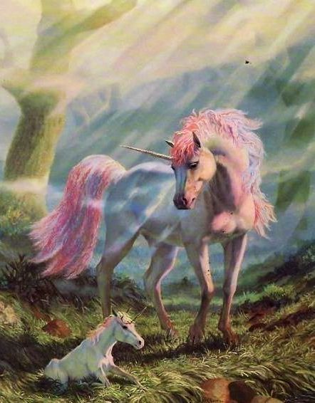 Unicorn Mom And Baby In 2019